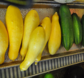 Fresh Zucchini/Summer Squash Fresh Zucchini and Summer Squash grown locally